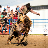 2014 Spencerville Rodeo-1