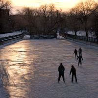Five Skaters on Patterson Creek
